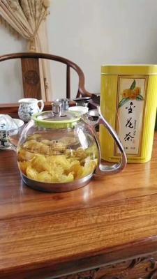 广西壮族自治区玉林市玉州区金花茶 5~10cm
