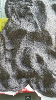 安徽省阜阳市界首市黑米色素提取过的米