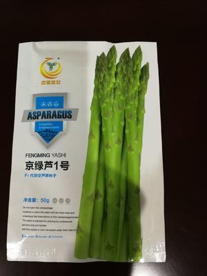北京海淀区芦笋种子