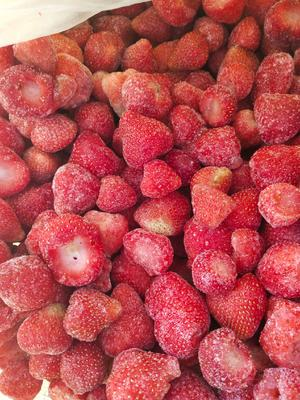 山东省日照市莒县速冻草莓