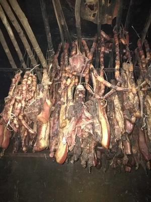 贵州省黔南布依族苗族自治州罗甸县野杂猪 160-200斤 统货