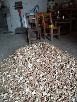 广西壮族自治区贵港市桂平市低硫干姜片 袋装 18-24个月