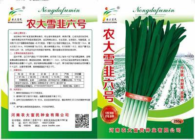 河南省郑州市惠济区韭菜种子