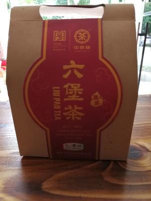 广西壮族自治区南宁市西乡塘区广西六堡茶 袋装 一级