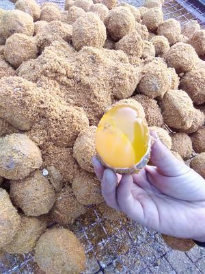 河南省郑州市管城回族区五香变蛋