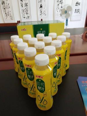 甘肃省武威市民勤县刺梨汁 塑料瓶 6-12个月