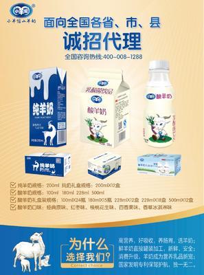 广西壮族自治区南宁市西乡塘区羊奶 24个月以上 避光储存