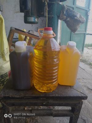 河南省周口市西华县自榨纯菜籽油