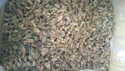 新疆维吾尔自治区吐鲁番地区吐鲁番市无核葡萄干 统货
