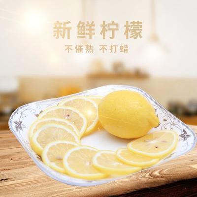 安岳柠檬 2 - 2.6两