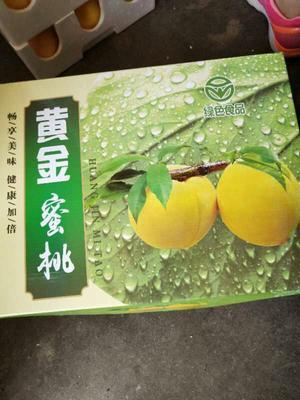 山东省临沂市沂水县黄金黄桃 70mm以上 4两以上
