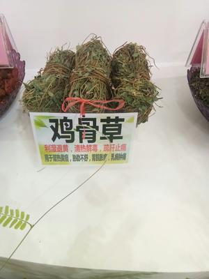 广西壮族自治区玉林市玉州区常山