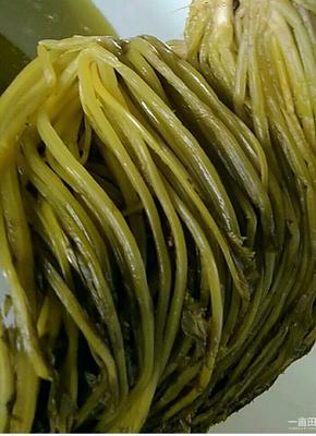 安徽省合肥市包河区雪菜泡菜