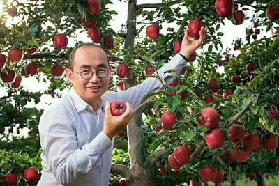 甘肃省天水市秦州区红蛇果 200-300克