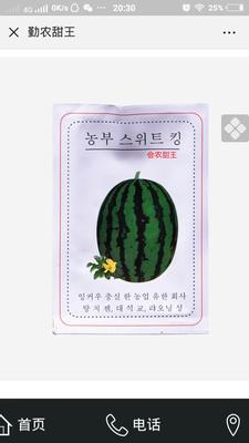 辽宁省营口市西市区甜王西瓜种子