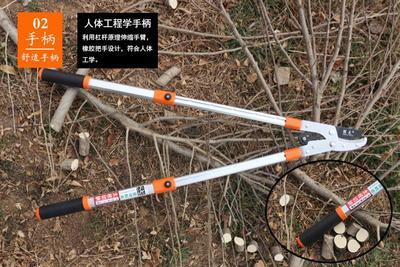山东省潍坊市坊子区修枝剪刀