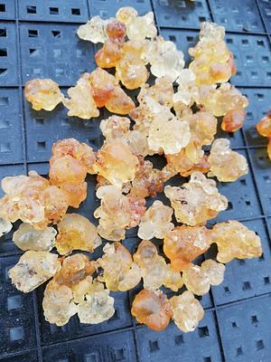 广东省广州市荔湾区食用桃胶 24个月以上