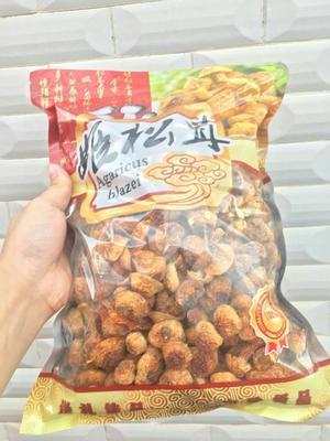 广东省梅州市梅江区香格里拉松茸 人工种植 5cm以下 未开伞 干货