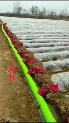 天津宝坻区水带