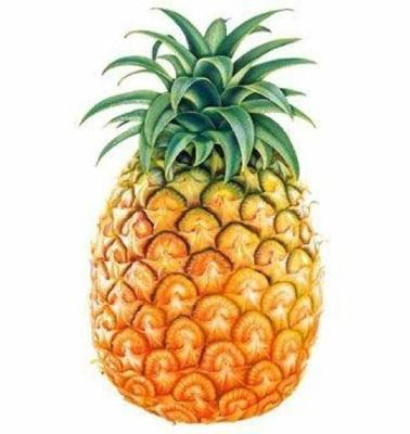 无眼菠萝 2.5 - 3斤