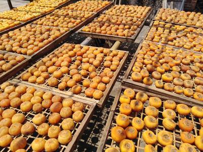 广西壮族自治区桂林市平乐县桂林柿饼 箱装
