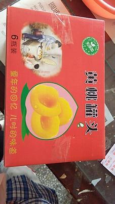 安徽省宿州市砀山县黄桃罐头 18-24个月