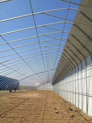 江苏省连云港市海州区C型钢温室大棚