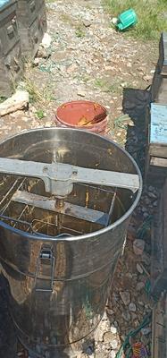 湖南省常德市桃源县土蜂蜜 桶装 100% 2年以上