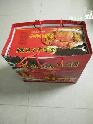 江苏省苏州市昆山市阳澄湖大闸蟹 3.0-3.5两 公蟹