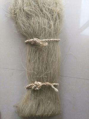 河南省郑州市中牟县红薯粉