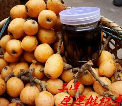 安徽省黄山市屯溪区枇杷膏制品 18-24个月