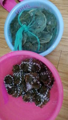 这是一张关于大公圩大闸蟹 4.0两以上 公蟹的产品图片