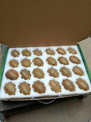 这是一张关于海沃德猕猴桃 90~100克的产品图片
