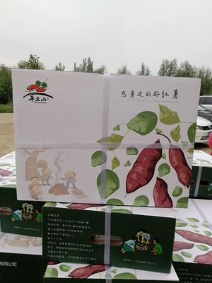 这是一张关于红心红薯 红皮 3两~6两的产品图片