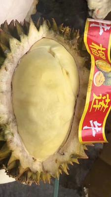 这是一张关于金枕头榴莲 90%以上 2 - 3公斤的产品图片