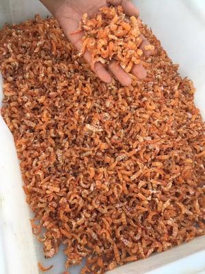 这是一张关于海米干的产品图片