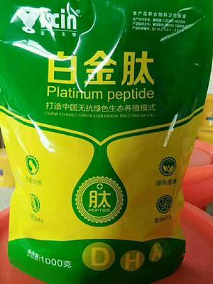 河南省郑州市金水区鸡鸭饲料