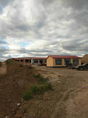 内蒙古自治区赤峰市松山区C型钢温室大棚