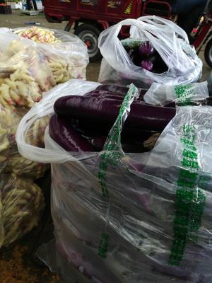 贵州省贵阳市花溪区紫长茄 2两以上