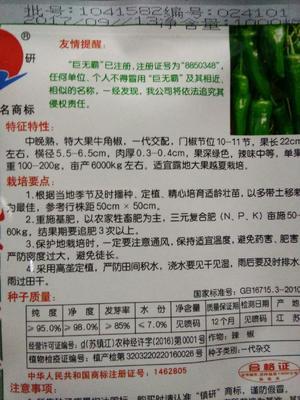 这是一张关于牛角椒种子 95%以上 杂交种的产品图片