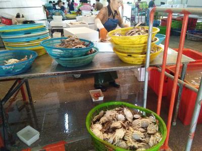 这是一张关于冻梭子蟹的产品图片