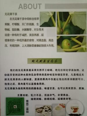 安徽省合肥市长丰县无花果茶 散装 二级