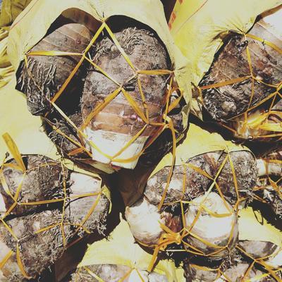 湖北省武汉市硚口区槟榔芋 6cm以上