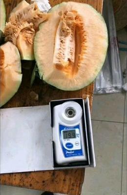 这是一张关于西州蜜 2斤以上的产品图片