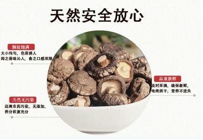 江苏省徐州市沛县原木干香菇 散装 1年以上