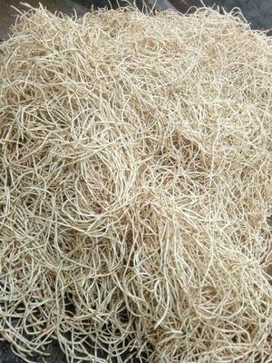 这是一张关于白茎鱼腥草的产品图片