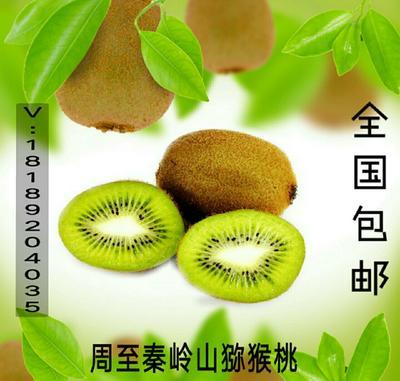 这是一张关于徐香猕猴桃 60~100克的产品图片