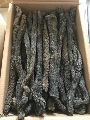 这是一张关于肉苁蓉的产品图片
