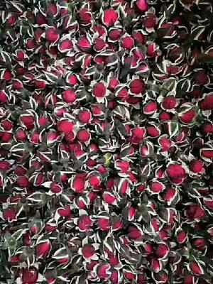 河北省保定市安国市金边玫瑰茶 袋装 一级