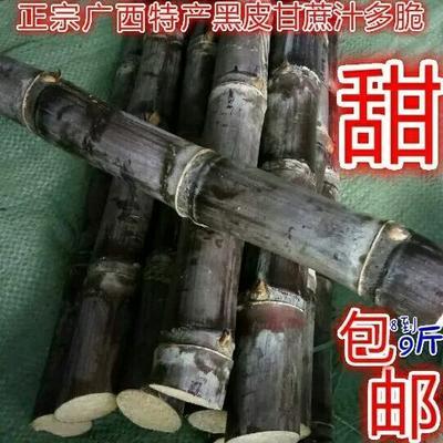 广西壮族自治区崇左市宁明县黑皮甘蔗 1 - 1.5m 4 - 5cm